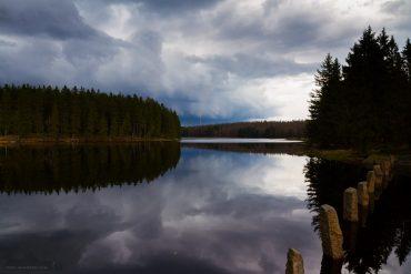 Foto-Wandern.com - Oderteich