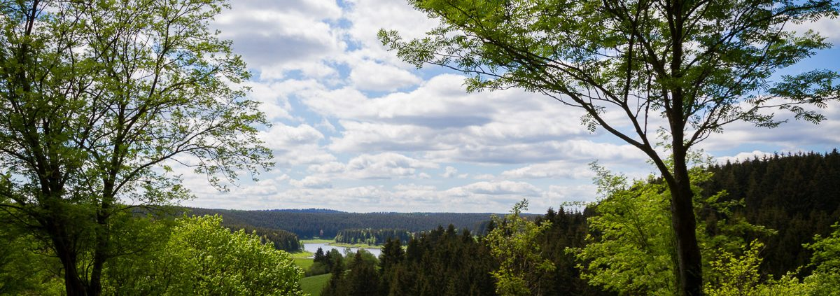 Landschaftsfotografie am Stausee Mandelholz