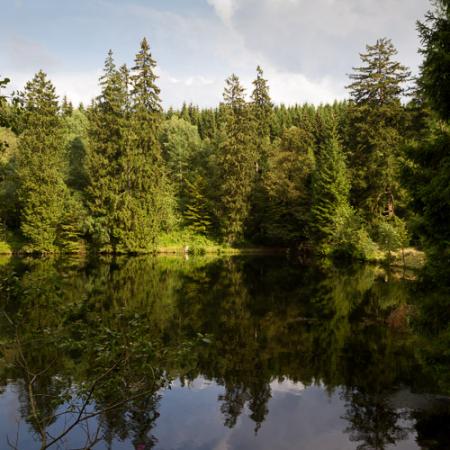 Fotowanderung auf dem Naturmythenpfad