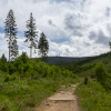 Fotokurs Landschaftsfotografie im Ilsetal