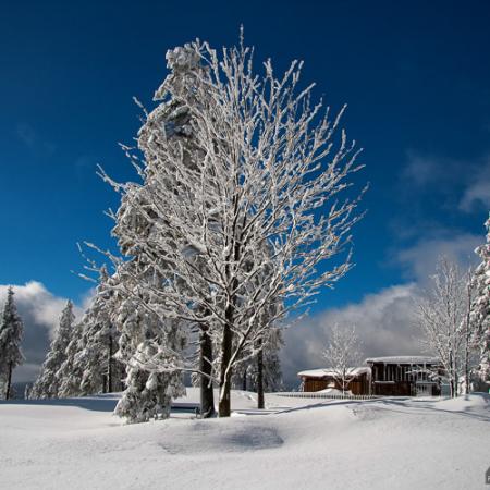 Fotokurs im Winter auf dem Wurmberg mit Foto-Wandern.com - Winterkurs Wurmberg