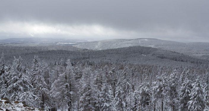 Fotowanderung auf den Achtermann im Winter