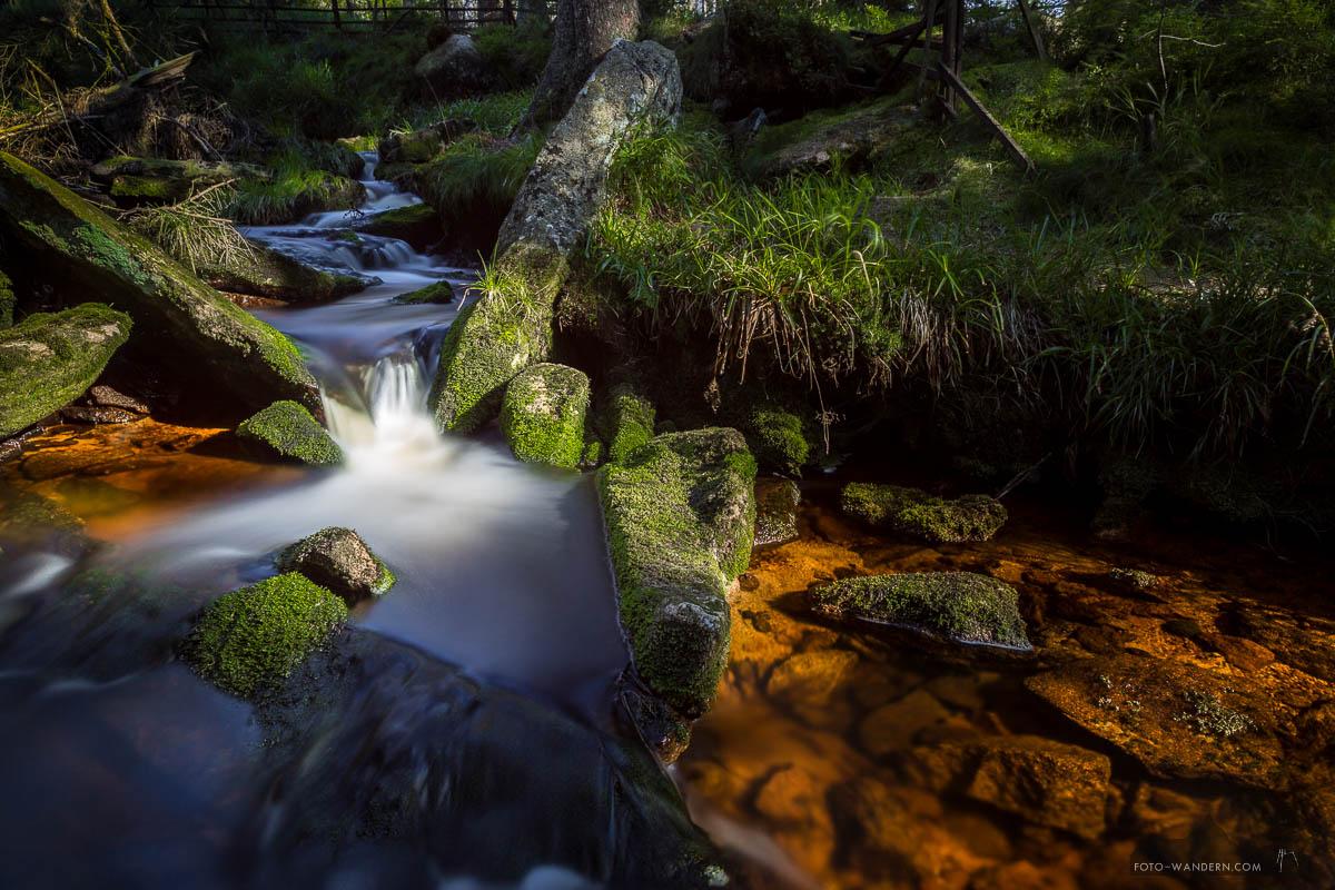 Die Oder am Oderteich