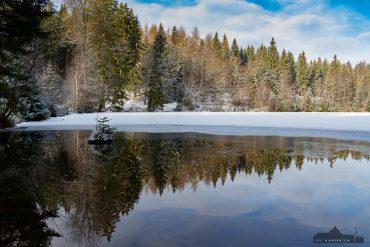 Harz-Fotokurse im Winter - Silberteich