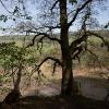 Fotowanderung zum Bauerngraben