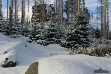 Winter-Fotokurs im Harz