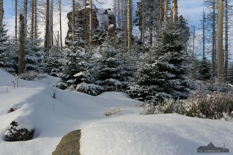 Winter-Fotokurs im Harz