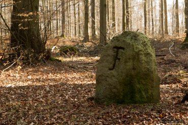 Fotowandern und Fotokurse im Harz mit Foto-Wandern.com - Steinmühlental