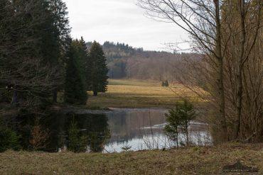 Fotowandern und Fotokurse im Harz mit Foto-Wandern.com - Helltalsteich