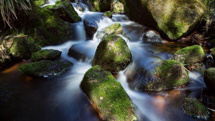 Foto-Wandern.com - Fotokurse im Harz @ Andreas Levi