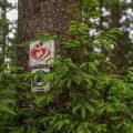 Landschaftsfotografie auf dem Liebesbankwegesbankweg