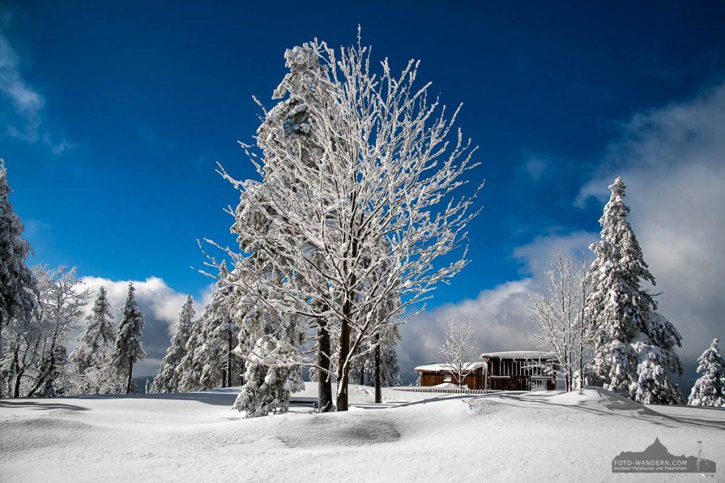 Fotokurs Landschaftsfotografie im Winter auf dem Wurmberg bei Braunlage im Harz