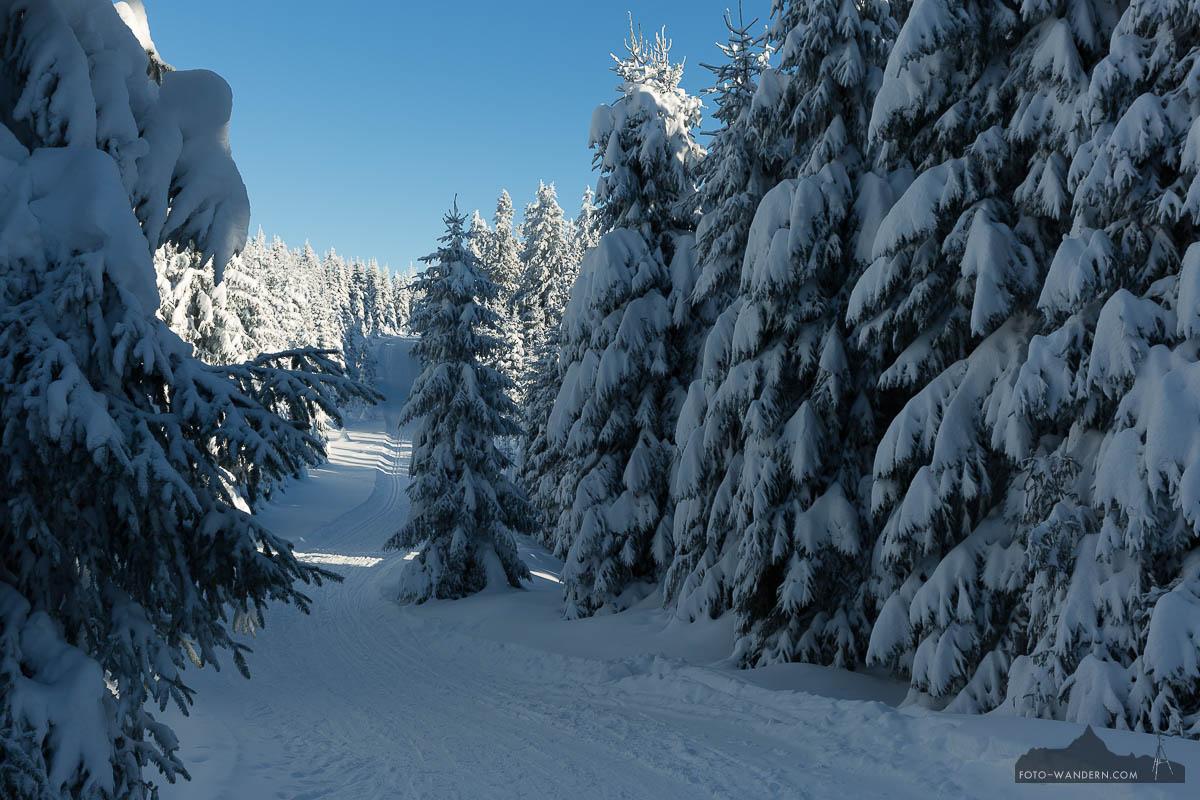 Winterwanderweg im Harz