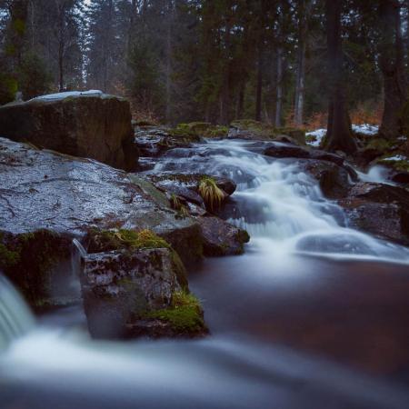 Fotokurs Langzeitbelichtung im Nationalpark Harz mit Foto-Wandern.com