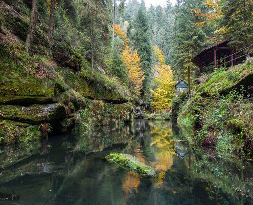 Fotokurs-Tage im Elbsandsteingebirge Herbst