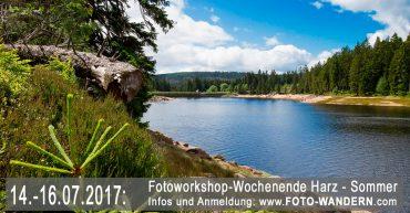 Fotoworkshop-Wochenende-Harz---Sommer-2017