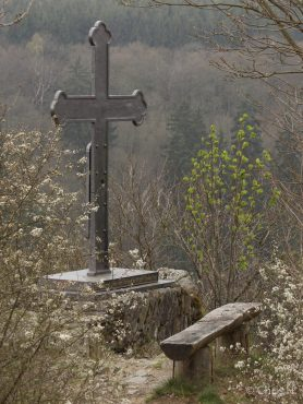 Fotokurs Landschaftsfotografie im Selketal © Chris Herling