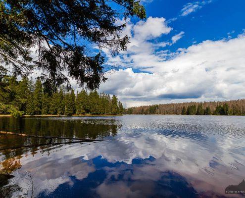 Fotowanderung im Nationalpark Harz - Oderteich