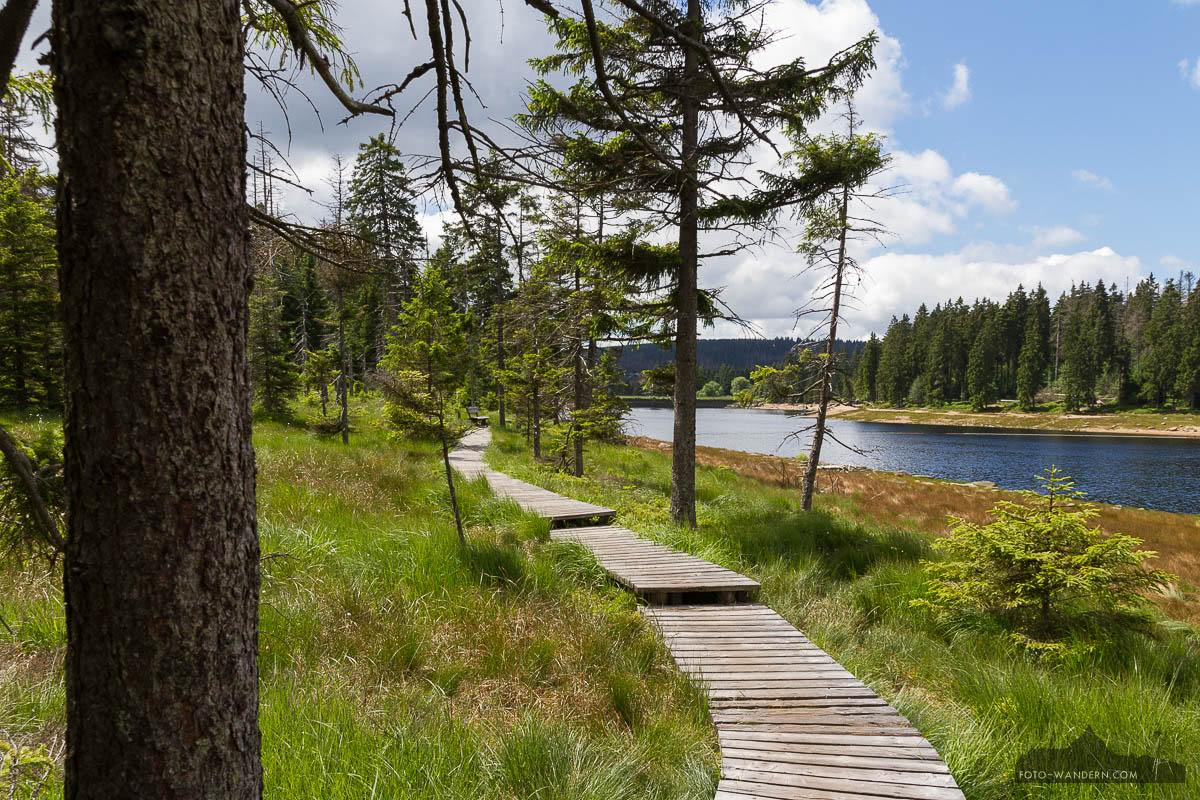 fotowanderung um den oderteich im nationalpark harz. Black Bedroom Furniture Sets. Home Design Ideas