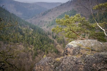 Junggesellenabschied mit Fotokurs im Harz © Björn Wrede