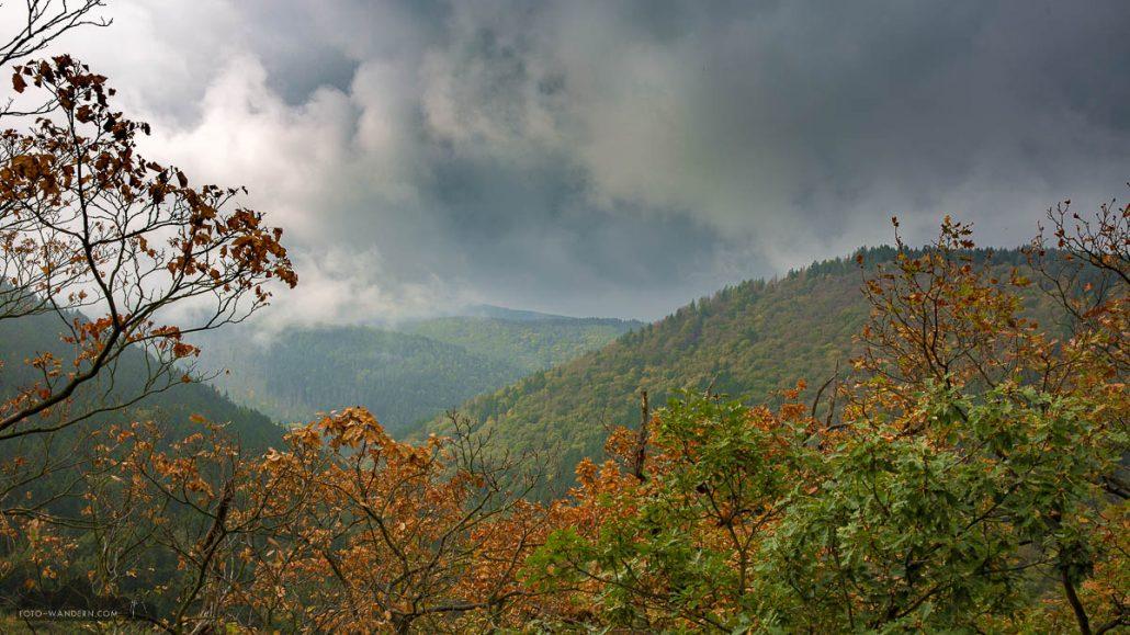 Fotokurs-Wanderwoche im Harz - Herbst 2017 - Blick ins herbstliche Ilsetal