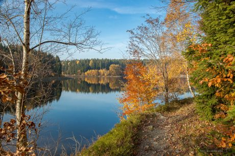 Fotokurs-Wanderwoche im Harz - Herbst 2017