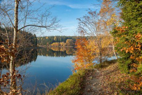 Fotokurs-Wanderwoche im Harz - Herbst 2017