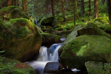 Wildbäche, Seen und Wasserfälle - Sommerfotokurse im Harz