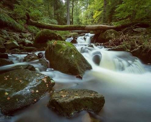 Landschaftsfotografie im Ilsetal, Harz