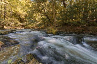 Fotowanderung durch das Bodetal, Harz © Horst-Dieter A. - bearbeitet mit NIK-Software