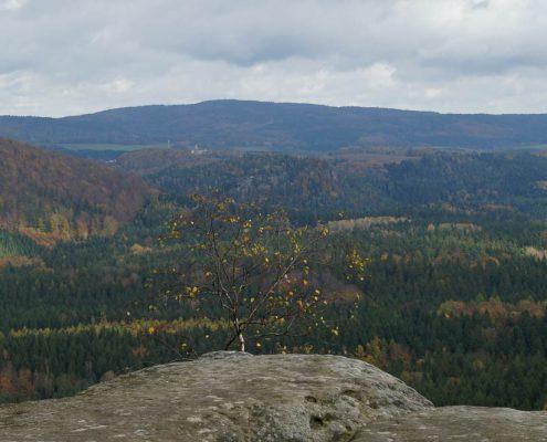 Fotokurs-Wochenende auf dem Malerweg in der Sächsischen Schweiz - Herbst 2017 © Anja N.