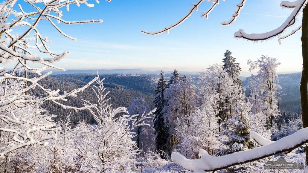 Winter-Fotowanderung Rehberger Graben