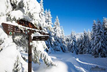 Winterwandern im Oberharz