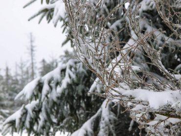 Winter-Fotowanderung im Oberharz © Sebastian G.