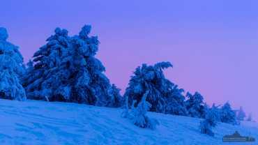 Blaue Stunde auf dem Brocken