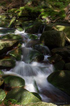 Fotowanderung auf den Brocken