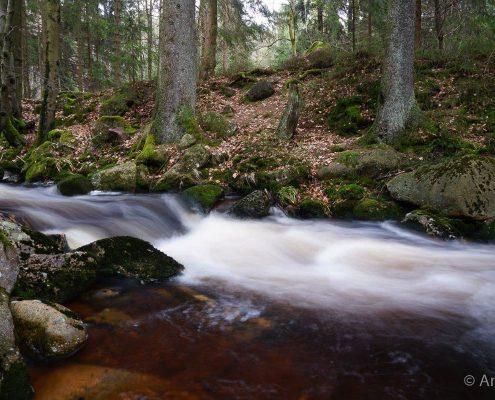 Einzelcoaching Langzeitbelichtung im Harz © Anke W.
