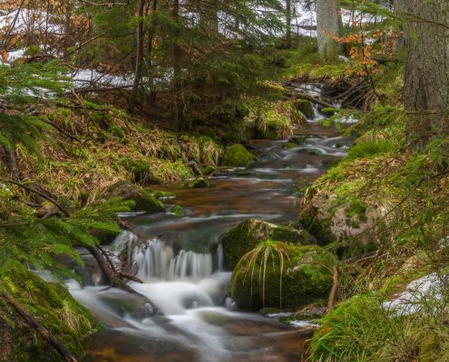 Fotokurs Langzeitbelichtung im Harz © Daniela R.
