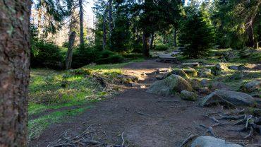 Harzer Gipfeltour - Eckerlochstieg