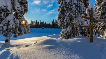 Winterwandern im Harz © Andreas Levi - Foto-Wandern.com - ALP_8028