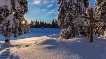 Winterwandern im Harz