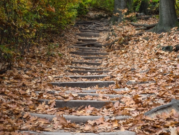 Fotoreise Sächsische Schweiz - Herbst 2018 © Christa F.