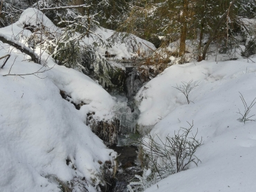Winter-Fotokurs Landschaftsfotografie im Harz mit dem NDR © Anke B. -Harz7