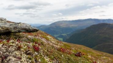 Fotoreise Norwegen - Hochgebirge