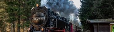 Fotowanderung von Sophienhof auf dem Südharzer Dampfok Steig