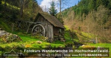 Fotokurs Wanderwoche im Hochschwarzwald 2020