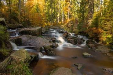 Fotoworkshop-Wochenende im Harz - Herbst 2019