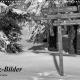 Fotokalender 2020 - Harz-Bilder in monochrome