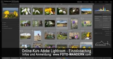 Online-Kurs Adobe Lightroom