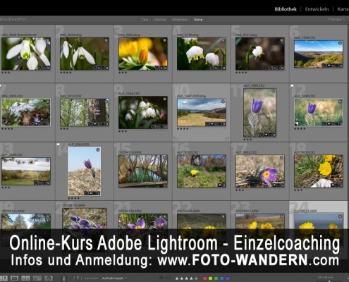 Online-Kurs Adobe Lightroom